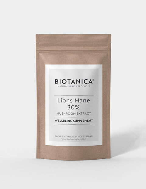 Lions Mane Image 1